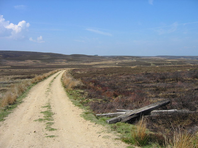 Moorland track on Hexhamshire Common