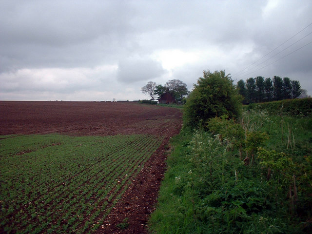 Near Southwold Farm