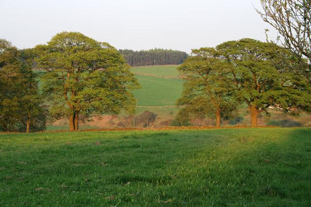 Farmland in the Peak District