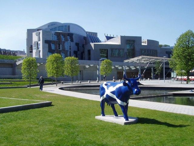 Edinburgh Cattle