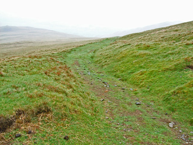 Track on the slopes of Arant Haw