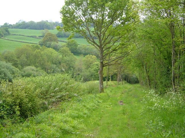 Charmoor Lane