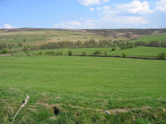 Farmland near Low Lee farm