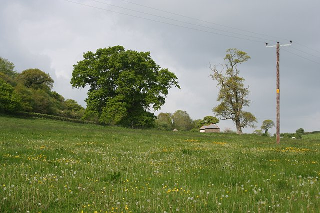 Meadow and Farmhouse