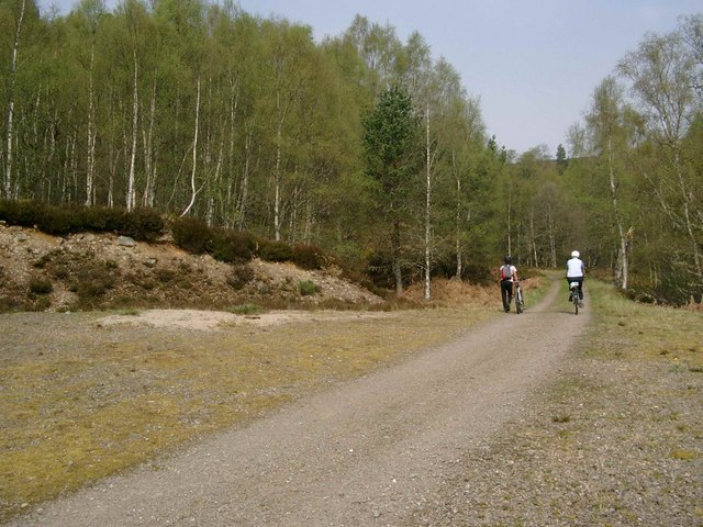 Forestry track near Dog Falls
