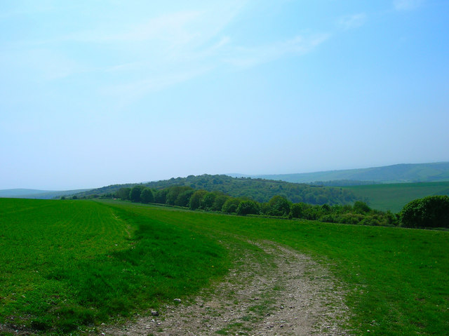 Downland near Lullington Heath