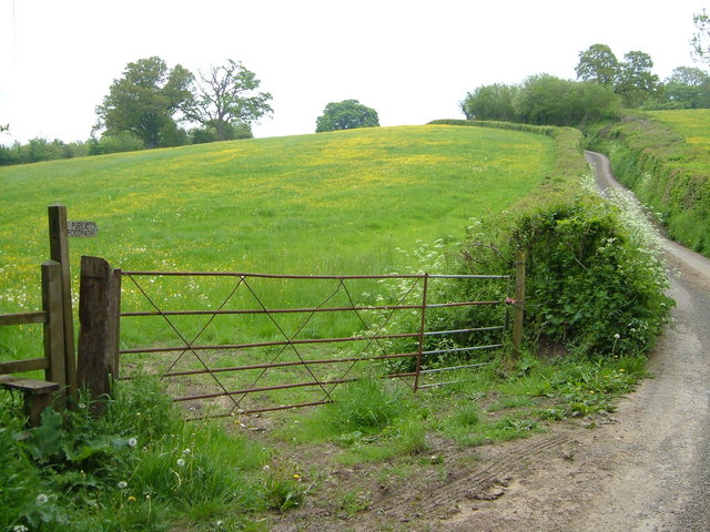 Griffin Lane, West Hatch