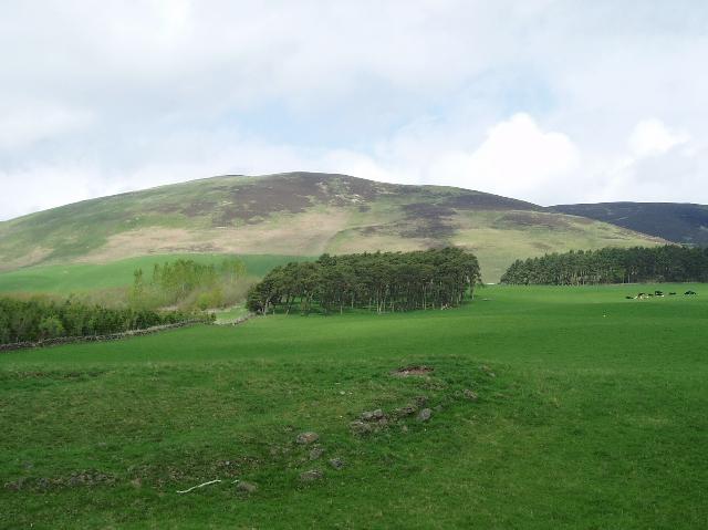 Farmland near Elsrickle