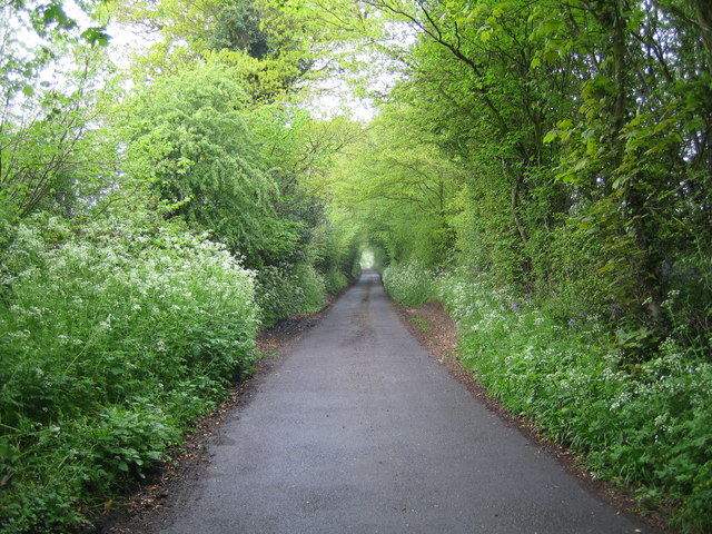 Caddington: Millfield Lane