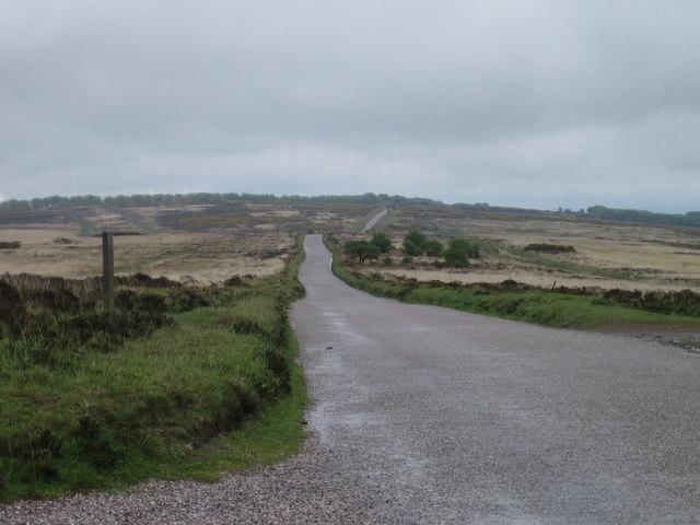 West Anstey Common
