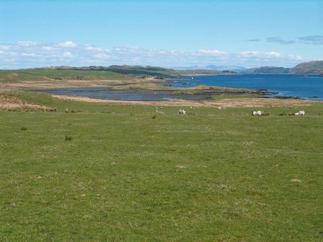 Pasture at Aird Luing