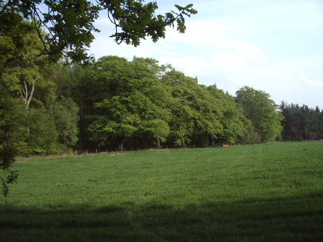 Lalbuss Plantation