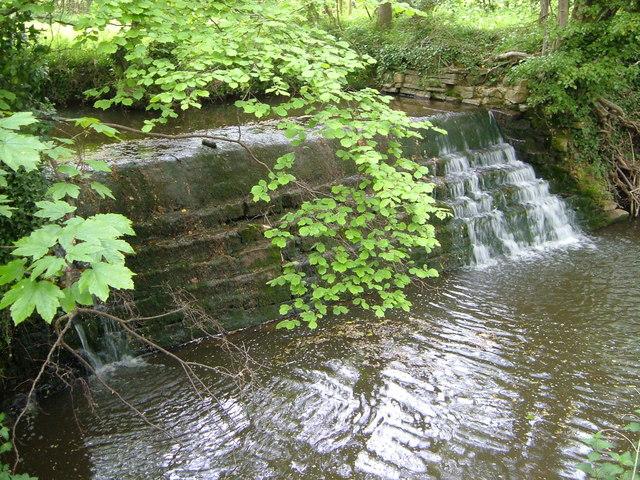 Weir near Hatch Beauchamp