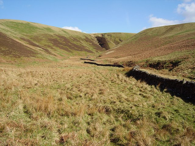 Headwaters of the Tweeddale Burn
