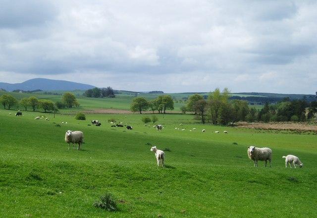 Rural South Lanarkshire