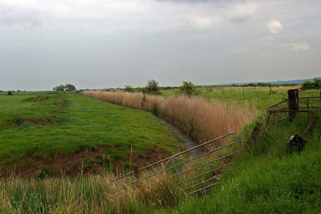 Dyke near Cliffe Pools