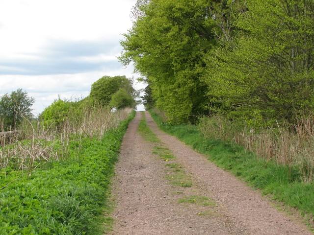 Cloburn track