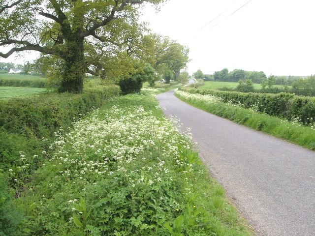 Lane to Batten's Green