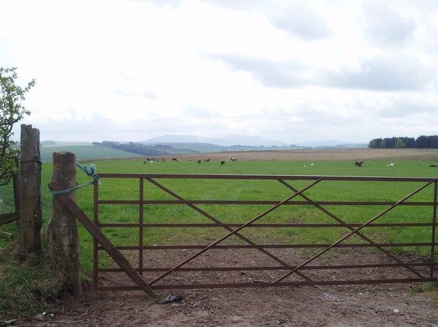 Farmland, South Lanarkshire
