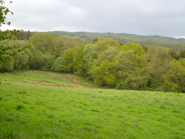 Ruttersleigh Common