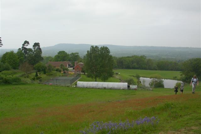 Willinghurst Farm