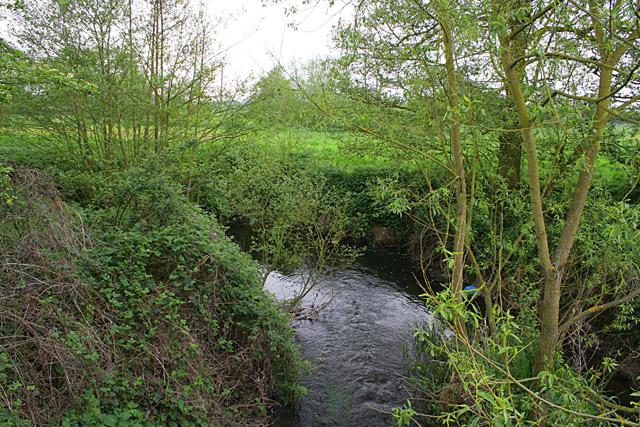 Thurlaston Brook at Stony Bridge