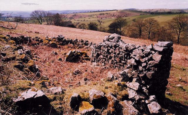 Ruins below Priory Cottage