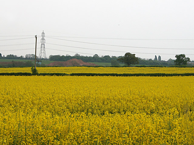 Farmland near Thurlaston, Leicestershire