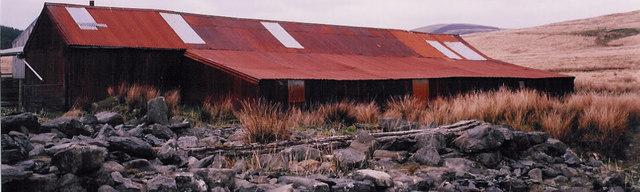 Sheep sheds at Hydd-Gen