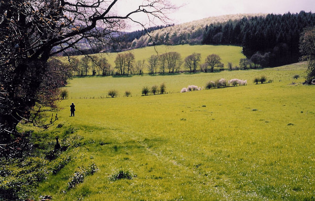 South Shropshire hills and woodland