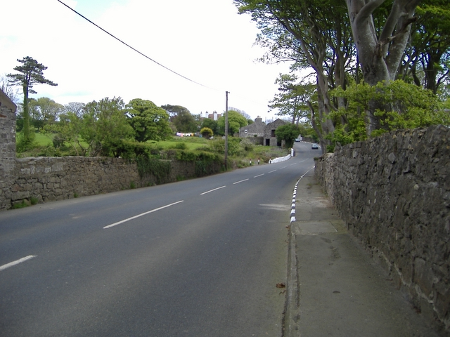 The A 7 road approaching Billown farm