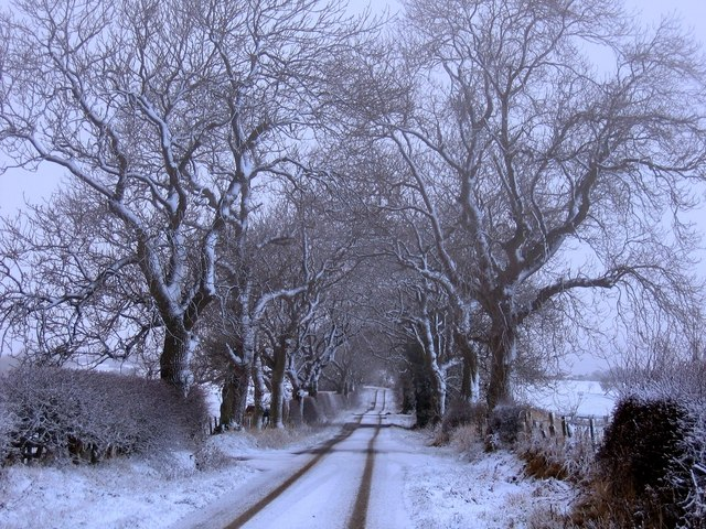 High Yarridge Road, Hexham