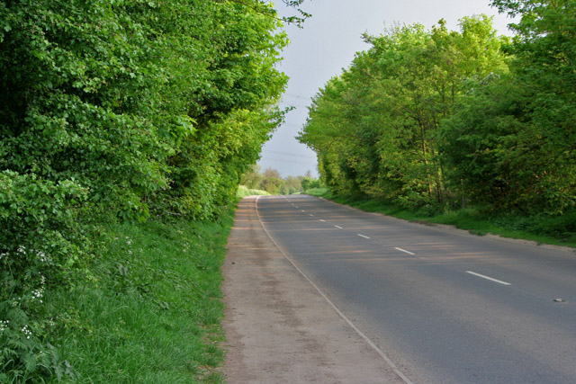 Forest Road near Huncote