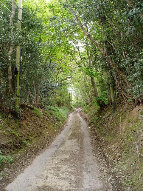 Country road near Bryn Saith Marchog