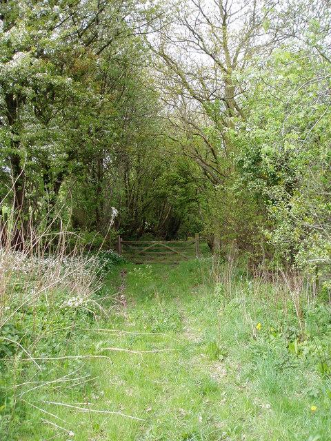 Bridleway leading to Pwll Goronwy