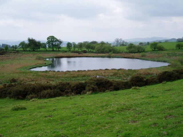 Lake on Mynydd Llanelidan