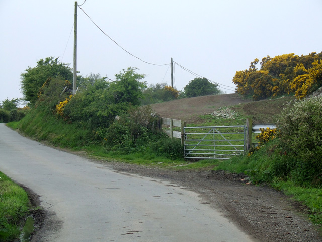 View of a country lane