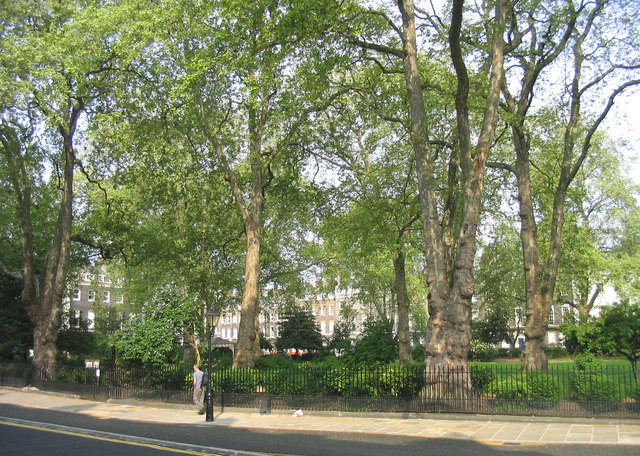 Bedford Square gardens
