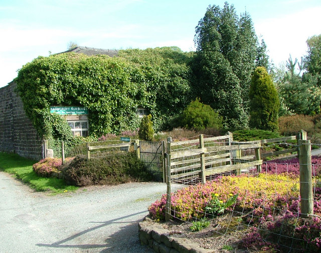 Barncroft Nurseries