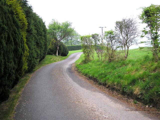 Driveway to Scarcliffe Farm, near Cononley, Yorkshire