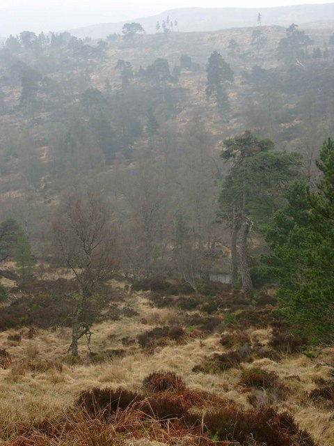 The Abhainn Deabhag on a misty day