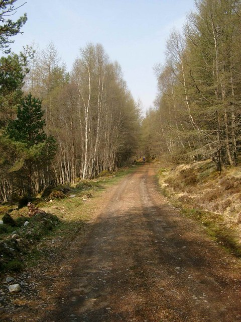 Forestry track from Tomich to Loch Beinn a Mheadhoin