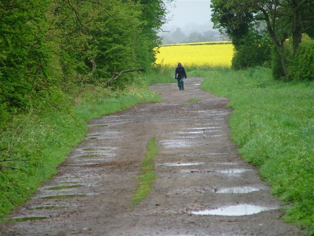 A Lone Walker on the Coast to Coast