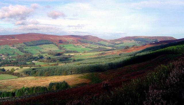 Bilsdale Views