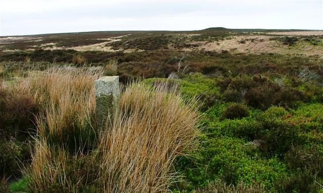 Boundary Stone, Great Dinnord