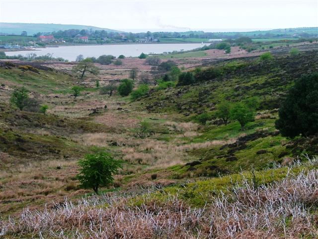 Fanklan Dike, Easington High Moor