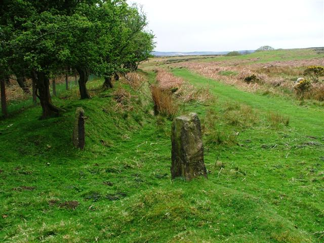 Old Field Boundary and Gate