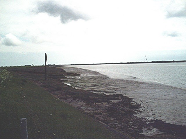 Saltings east of Tyle Barn Sluice
