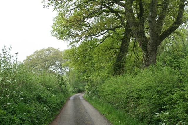Stawley: near Stawley Wood Farm