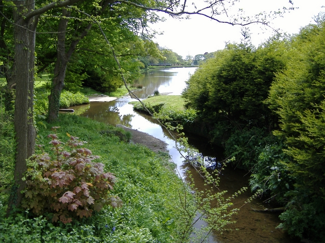 Stream going into small lake, Billown